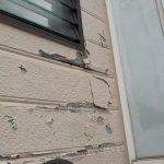 塗膜が剥がれている外壁